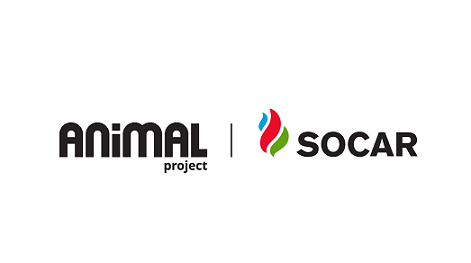 AnimalProject-Mini
